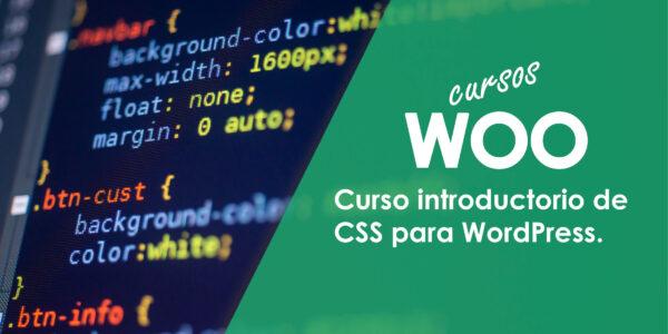 Curso introductorio de CSS para WordPress